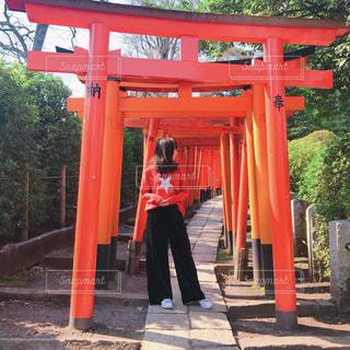 背景には伏見稲荷大社を持つ赤いシャツの男の像の写真・画像素材[2175496]