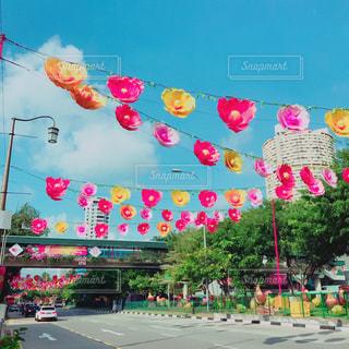 カラフルな花の群しの写真・画像素材[2382191]