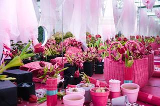 花,ピンク,東京駅,チューリップ,鏡