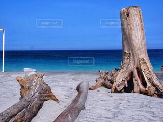 ビーチの写真・画像素材[1417766]