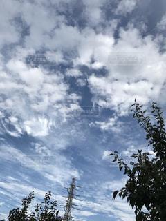 空,雲,朝,秋空