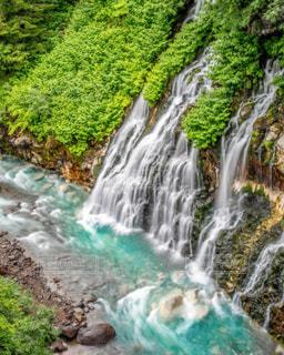 白髭の滝の写真・画像素材[1449617]
