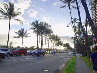 空,建物,海外,雲,散歩,車,道路,景色,観光,道,旅行,朝,ヤシの木,川沿い,海外旅行,タウン,外車