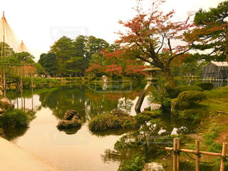 秋,紅葉,観光地,池,観光,庭園,石川県,金沢,兼六園
