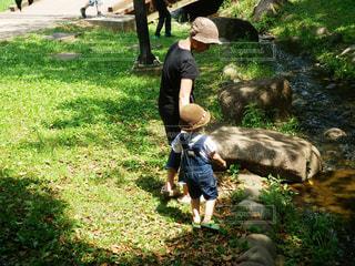 風景,公園,屋外,親子,後ろ姿,帽子,散歩,草,人物,背中,麦わら帽子,人,後姿,幼児