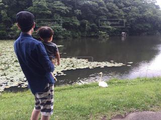 子ども,公園,鳥,屋外,森,親子,後ろ姿,散歩,人物,背中,人,後姿,幼児,少年,男の子