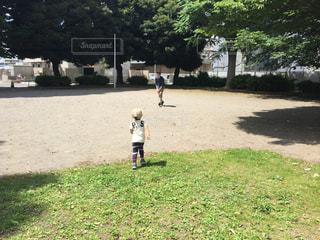 子ども,屋外,親子,後ろ姿,人物,背中,ボール,人,後姿,幼児,少年,男の子,キャッチボール