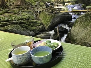 樹木,草餅,食欲の秋,お茶処,小太郎ヶ淵