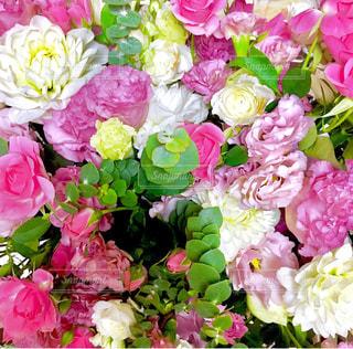 ピンク,花束,バラ,カーネーション,ダリア,ピンクだらけ♡