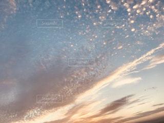 自然,空,秋,夕日,屋外,雲,水色,夕陽,秋晴れ,いわし雲,インスタ映え