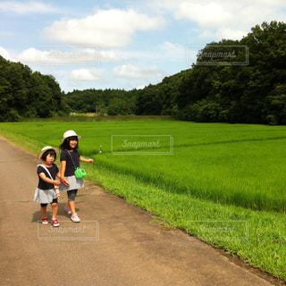 夏の田舎の写真・画像素材[1429481]