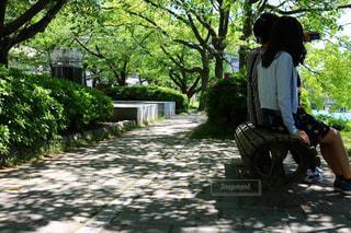 公園のベンチに座っている男女の写真・画像素材[1429883]