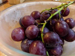 秋,紫,ブドウ,葡萄,新鮮,ムラサキ,ぶどう,むらさき