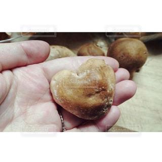 ハートの椎茸の写真・画像素材[1463130]