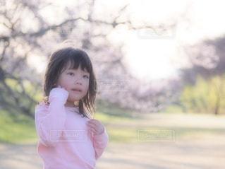 桜,ピンク,女の子,ピンク色,桃色,pink,愛知県