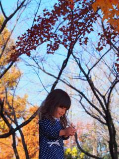 空,公園,秋,紅葉,赤,青空,青,子供,女の子,黄,秋空,愛知県,黄葉