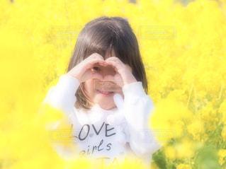お花畑,屋外,黄色,菜の花,女の子,ハート,菜の花畑,黄,愛知県,yellow,5才