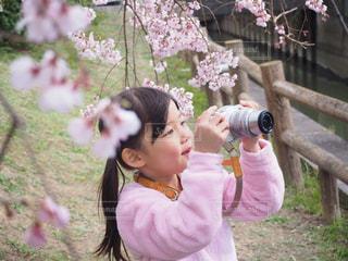 私たちカメラ女子♡の写真・画像素材[1870204]