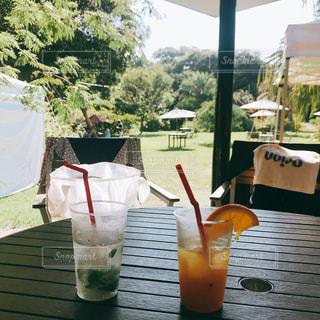 夏休みの写真・画像素材[1433749]