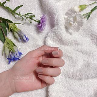 花を持っている手の写真・画像素材[1560223]