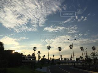 空,公園,木,夕焼け,夕暮れ,影