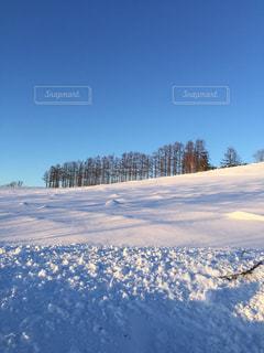 風景,空,雪,屋外,北海道,雪景色,美瑛