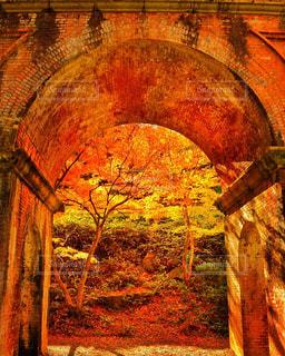 近くにレンガの壁のアップの写真・画像素材[1667106]