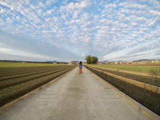 空,雲,青空,散歩,田舎,子供,少女,田んぼ,田園,さんぽ,秋空,のどか,カントリーロード