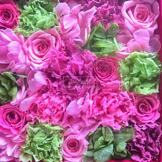 ピンクの花の花束の写真・画像素材[1446844]