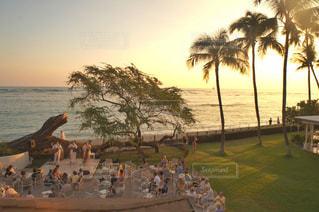 自然,海,空,夕日,屋外,海外,ビーチ,海辺,水面,海岸,樹木,人,音楽,ヤシの木,ハワイ,夕陽,サンセット,マジックアワー,草木,アロハ,オーシャンビュー,演奏会,休暇