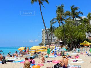 海,空,屋外,海外,ビーチ,カラフル,青,海辺,黄色,海岸,樹木,人物,パラソル,ハワイ,夏休み,リゾート,海外旅行,パーム,休暇