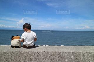 にゃーにゃーとみる海の写真・画像素材[1437227]