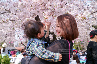 女性,子ども,家族,風景,花,桜,花見,人,笑顔