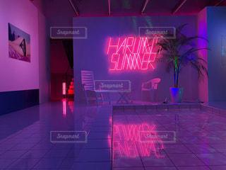 ピンク,絵,アート,ネオン,展示,展覧会