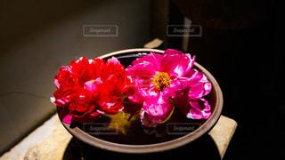 花,ピンク,赤,牡丹,器