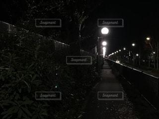 東京,井の頭通り,ウォーキング & ランニングによく使う歩道