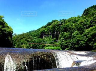 川の側の木と滝の写真・画像素材[1452923]