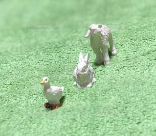 ひつじ,アヒル,運動会,ウサギ