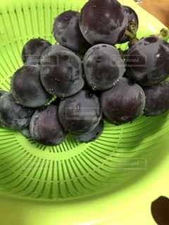 食べ物,秋,緑,紫,ブドウ,葡萄,食,食欲,ぶどう,食欲の秋