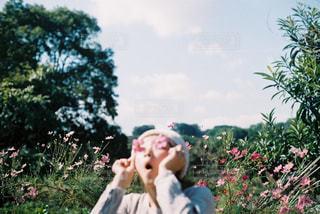 自然,花,秋,花畑,コスモス,olympus,田舎,女の子,人物,人,フィルム,野外,コスモス畑,フィルムカメラ,フィルム写真,道路沿い,OLYMPUSom-1