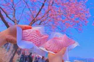 ピンク,ピンクの鯛焼き