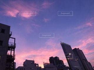 ピンク,夕焼け,代々木,ピンク色,桃色,pink,ビル街