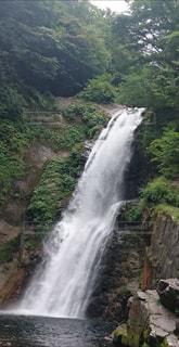 森の中の大きな滝の写真・画像素材[1449670]