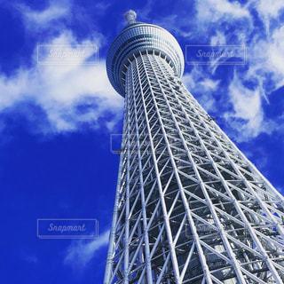 新婚旅行の夏の思い出 東京スカイツリーの写真・画像素材[1445351]