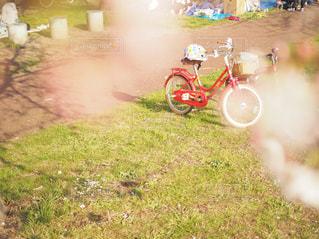 桜の間からカラフルな自転車が。の写真・画像素材[1918954]
