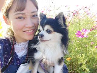 犬のカメラにポーズを保持している小さな女の子の写真・画像素材[1591995]