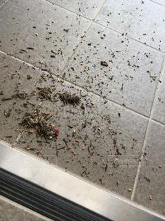 玄関,埃,掃き掃除,茶殻