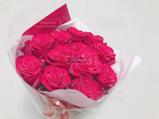 12本の薔薇の花束の写真・画像素材[3084281]