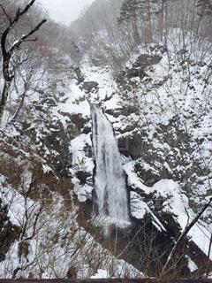 冬の滝の写真・画像素材[1454271]