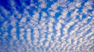 空,秋,雲,晴れ,青,芸術,Sky,うろこ雲,宇宙,地球,秋空,秋色,ひつじ雲